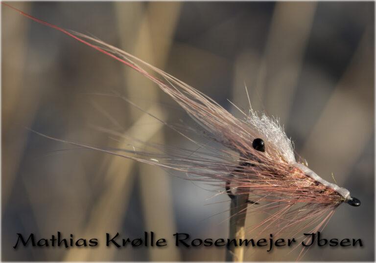 mathias-krølle-rosenmejer-ibsen-shrimp