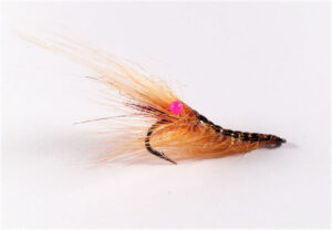 shrimp-pink-easy-shrimp-eyes-erik-petersen