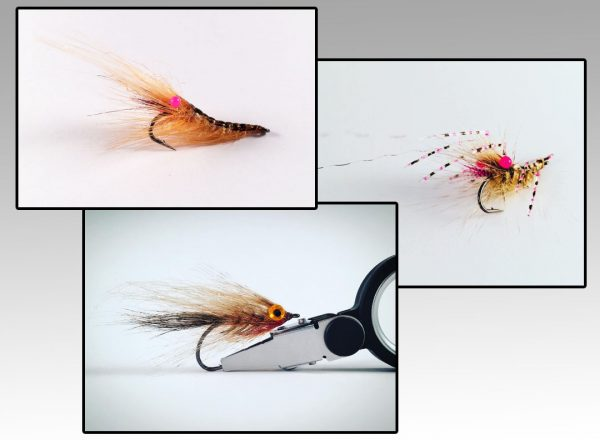 Easy Shrimp Eyes Products Gallery